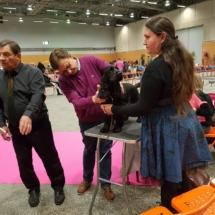 Maïev à l'expo de Nantes 2017
